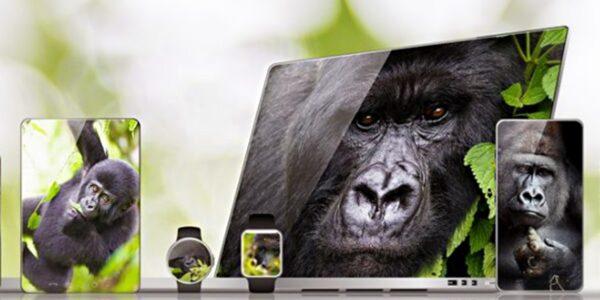 gorilla-glass-victus